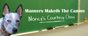 manners maketh the canine nancy's courtesy class