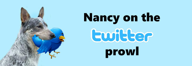 nancy twitter prowl