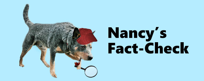 nandy_factcheck