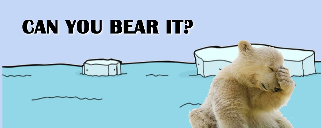 Can You Bear It