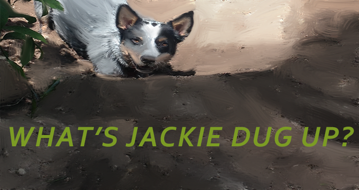 What's Jackie Dug Up?