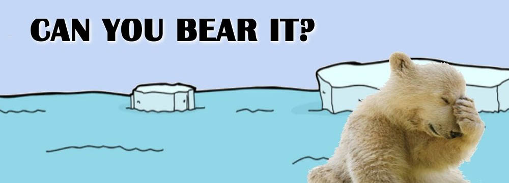 Can You Bear It?